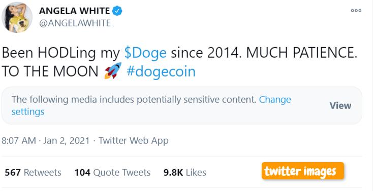dogecoin price surge tweet